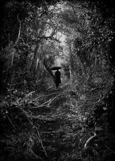 Nocturne- Complete Collection - Kirsty Mitchell Photography