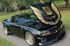 New Chevy Camaro conversion to Pontiac Firebird Trans Am.  Awesome!