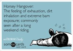 Horsey Hangover: The feeling of exhaustion, dirt inhalation, and extreme barn exposure; commonly seen after a long weekend riding.