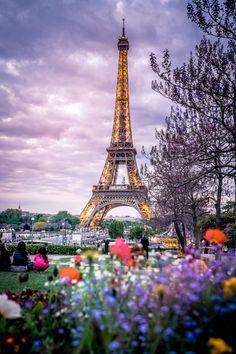 mbphotograph: Paris France (by mbphotograph) Follow me on...