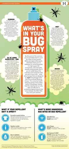 LOOK: What's Really Inside Your Bug Spray?