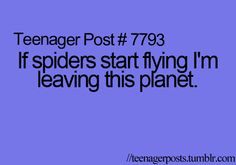 I'm legit serious here people. I absolutely hate spiders.even if that wont fix it because it will follow me......
