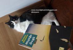 moonlightcat13: Okuma Halleri, Fotoğraflarla - Hiçliğe Övgü / Krit...