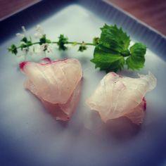 REBLOGGED - black sea bream sashimi.