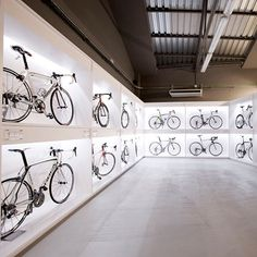 Pave Bike Shop by Joan Sandoval