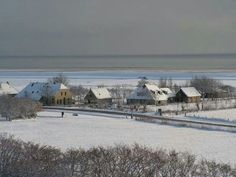 Terschelling (Friesland)