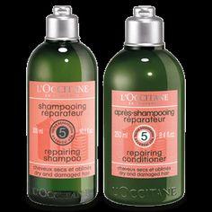 Aromachologie Repairing Duo | L'OCCITANE en Provence | United States