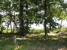 Beautiful Property In Mineola, Texas Within Walking Distance Of Enchanted Lake - Land Century
