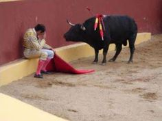 Alvaro Munero, realizing the horror of what he's done as a matador.  He now works to end bullfighting.