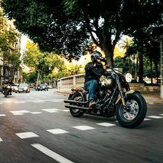Harley-Davidson 2016 photo shooting Harley Davidson, Motorcycle, Photoshoot, Photo Shoot, Motorcycles, Motorbikes, Choppers, Photography