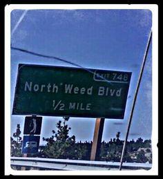 Oh California...