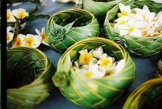 beautiful coconut palm woven bowls filled with plumeria blooms