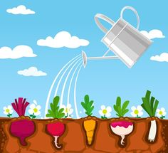By watering vegetables vector graphics