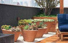 Projeto de paisagismo por Gilberto Elkis - Foto retirada do site Casa e Jardim