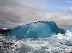 Blue iceberg!