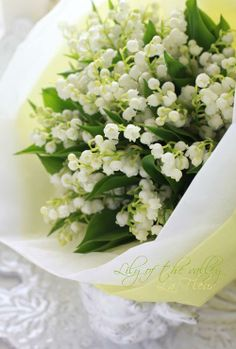 I love Lily Of The Valley