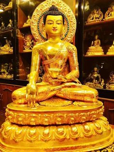 Buddha give me your shelter