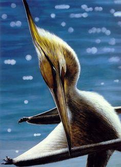 #Pteranodon, by Larry Felder. #pterosaur #paleoart