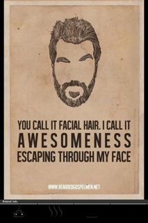 You call it facial hair. I call it awesomeness escaping through my face.