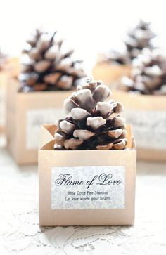 Diy Wedding Favors Cute For A Winter Pine Cone Fire Starters