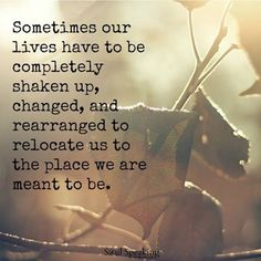 Sometimes our lives have to be completely shaken up, changed, and rearranged to…