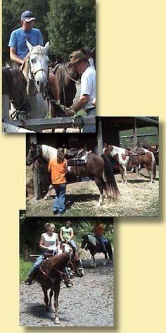 Dogwood Springs Ranch - Horse Trail Rides, Bristol NASCAR Accomodations