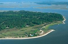 While staying on Tybee you won't want to miss the opportunity to make a day trip to beautiful Daufuskie Island. Daufuskie offers a glimpse of what other sea islands were like before bridges and causeways opened them to development.