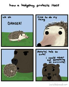 The Porcupine Defense Mechanism is On Point
