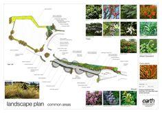 http://earthlandscapes.blogspot.pt/2011/08/romead-business-park-inspiring-green.html