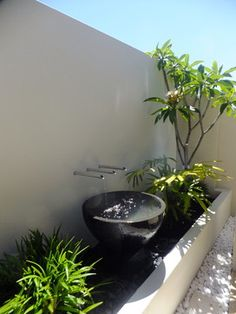 Modern Tropical Garden Design Ideas, Pictures, Remodel, and Decor Tropical Landscaping, Outdoor Landscaping, Tropical Garden, Luxury Landscaping, Small Gardens, Outdoor Gardens, Contemporary Water Feature, Contemporary Kitchens, Contemporary Bedroom
