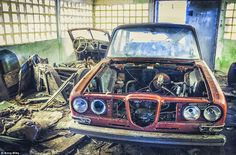 Vehicles lie broken and in disrepair, in an abandoned car graveyard in Poland, which Mika still manages to find beauty in