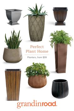 Container Herb Garden, Container Gardening Vegetables, Large Outdoor Planters, Hanging Planters, Backyard Projects, Backyard Patio, Perfect Plants, Front Yard Landscaping, Porch Decorating