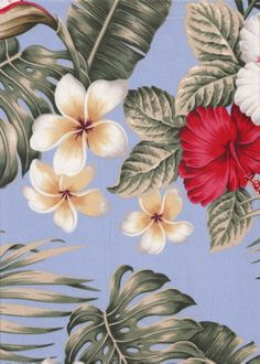 Bird Of Paradise, plumeria, hibiscus apparel cotton, tropical Hawaiian vintage style fabric. More fabrics like this at BarkclothHawaii.com