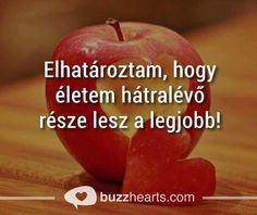 Carpe Diem, Einstein, Advice, Apple, Fruit, Quotes, Food, Buddhism, Funny