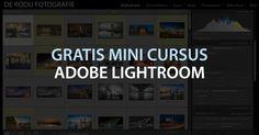Meld je ook aan voor de gratis mini cursus Adobe Lightroom (4 delen van ongeveer 1 uur). Wij leren je alles over het importeren, beheren, bewerken en exporteren van foto's.