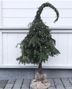 It's the season for elf looking trees 🎄The amazing thing is that this is not an actual tree. It's a beautiful arrangement created by 💚 IN LOVE! Whoville Christmas, Christmas Themes, Christmas Wreaths, Christmas Crafts, Christmas Decorations, Holiday Decorating, Xmas Holidays, House Plants, Seasons