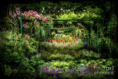 Monet's Lush Trellis Garden In Giverny, France Photograph by Liesl Walsh