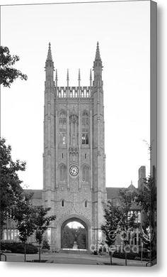 University Of Missou