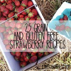 25 Grain + Gluten Free Strawberry Recipes || Cheeky Bums Blog