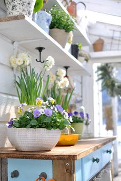Hooks Under Shelving.     Perfect for hanging plants!