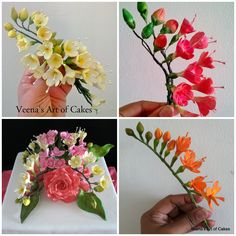 Gum Paste Freesia Tutorial (with/ w/o cutters )