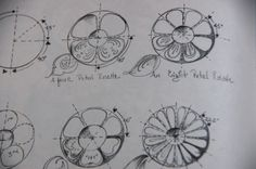 Drawing excercises from the book The Basics of Folk Art [Volume 1] [Paperback]  and Jo Sonja Sonja
