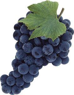 Виноград.png.jpg