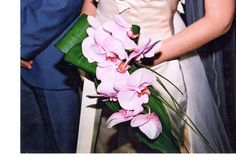 Elegant #bridal #bouquet with #pink #phalenopsis Bridal Bouquets, Orchids, Elegant, Pink, Classy, Wedding Bouquets, Pink Hair, Chic, Roses
