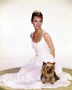 Audrey Hepburn #LL