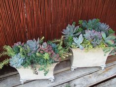 Succulent Florals in tin containers