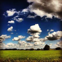 Azewijn #clouds #summer #tree #green #gold #blue #redbol