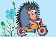 (2015-02) Pindsvinet køre på motorcykel