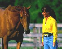 Basic Clicker Training for Your Horse