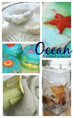 Engaging ocean activities for young kids! Fun and simple ocean activities to add to your Summer learning play. Great hands on play for preschool ocean theme Ocean Activities, Science Activities For Kids, Cool Science Experiments, Preschool Science, Science Ideas, Preschool Themes, Life Science, Preschool Crafts, Stem Projects